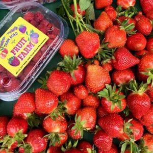 pyo-strawberries-canterbury