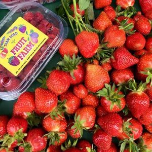 pyo-strawberries-canterbury